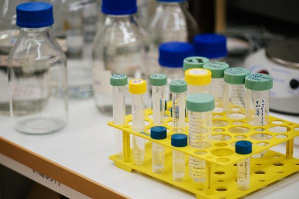 Якутские ученые создают аналоги органов человека