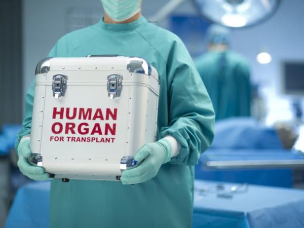 Какое влияние на транспланталогию оказывают достижения в области клеточных технологий и геномного редактирования