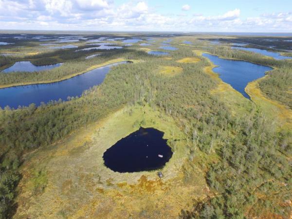 Сибирский ученый рассказал о роли болот в регулировании глобального климата