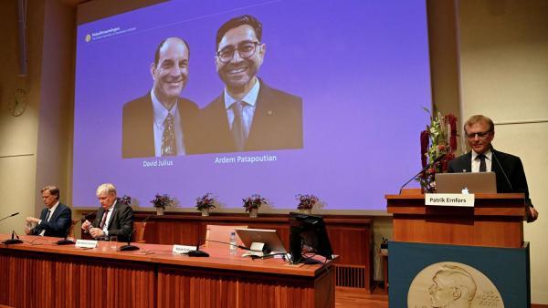 Чем важно присуждение Нобелевской премии по медицине за рецепторы