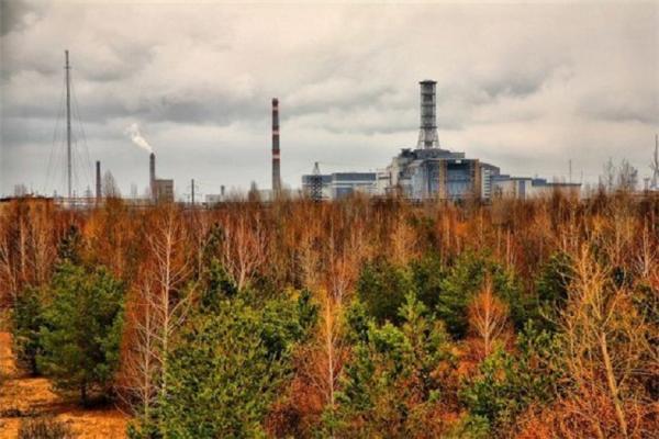 Исследование проводилось на единственном в России ускорительном масс-спектрометре