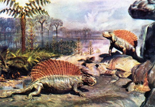 Как палеонтологи переосмыслили облик «ужасных ящеров»