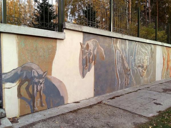 Беляевские лисы стали героями граффити в Академгородке
