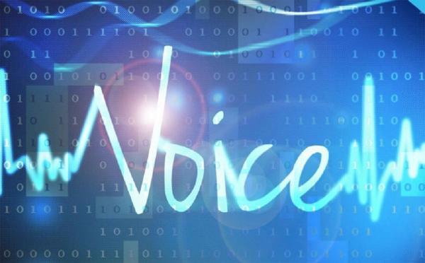 Мэрия Новосибирска начинает внедрять в городе технологии голосовых коммуникаций