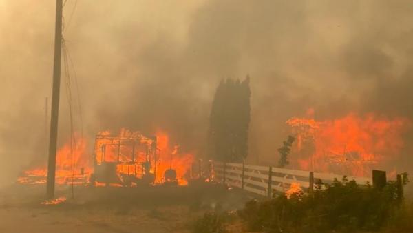 Аномальная июньская жара на западном побережье США и Канады привела в замешательство ученых-климатологов