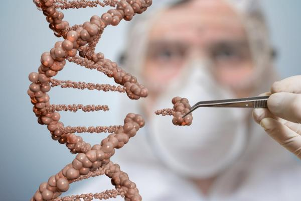 Россия включается в глобальную гонку в областиредактирования генома
