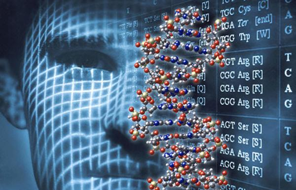 В число победителей конкурса на новые научные центры вошел проект с участием ИЦиГ СО РАН