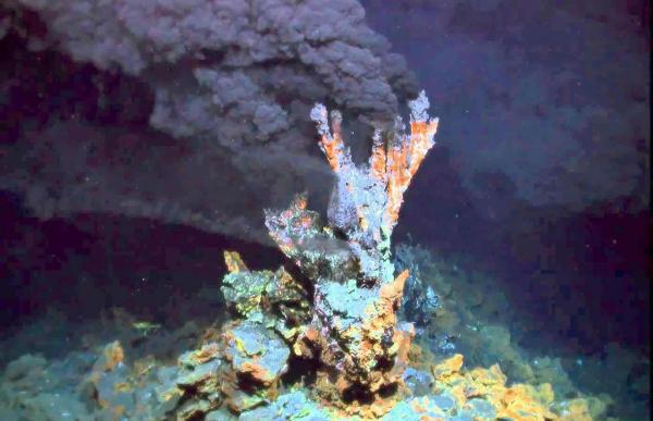Про исследования океана рассказали сотрудники Института океанографии РАН