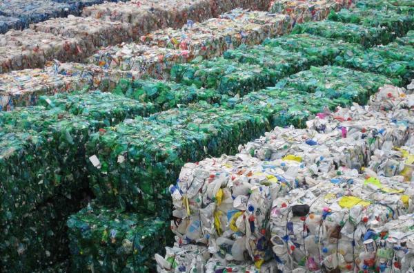 Ученые работают над технологией биологической утилизации бытовых отходов