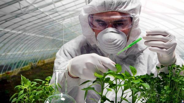 Минобрнауки России направит более 10 млрд рублей на развитие генетических технологий