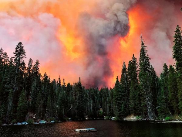 Ученые начинают оценивать вред для здоровья от масштабных лесных пожаров