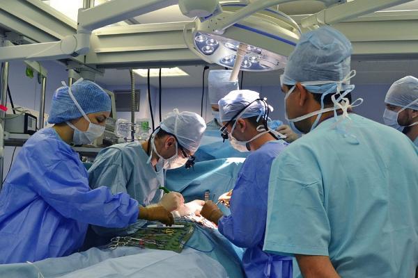 В них уже заранее включены клетки пациента или необходимые лекарства