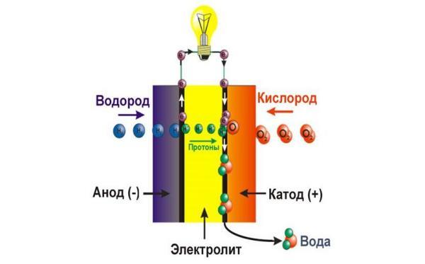 Новые мембраны для топливных элементов (ТЭ) созданы в Академгородке