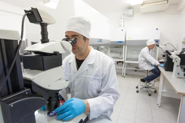 Исследования новосибирских ученых направлены на развитие методов криоконсервации живых организмов