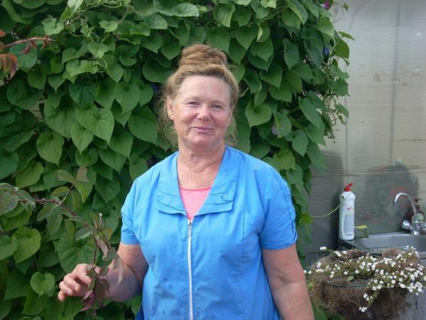 Беседаоб опыте выращивания винограда в Сибири в пленочных теплицах