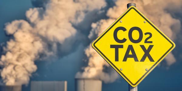 Российские ученые предлагают кооперироваться с нашим южным соседом по «углеродной» проблеме