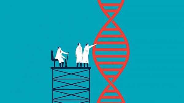Одна из публичных лекций в ИЦиГ СО РАН была посвящена проекту «Геном человека» и его последствиям