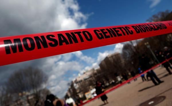 Распространяются слухи о том, будто транснациональная компания «Монсанто» (Monsanto Company) собирается строить семеноводческие предприятия на территории России