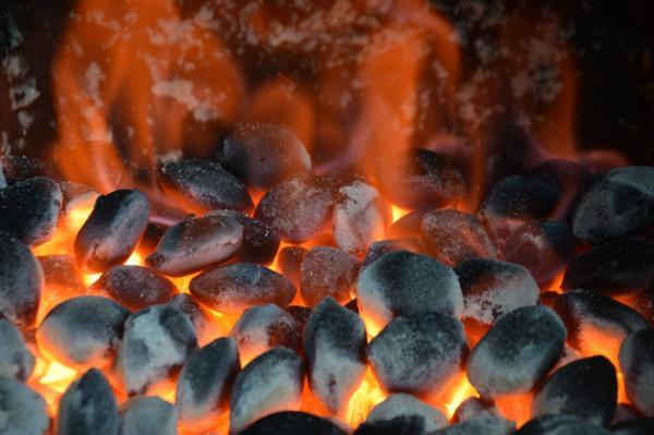В Академгородке создали технологию производства бездымного угольного топлива