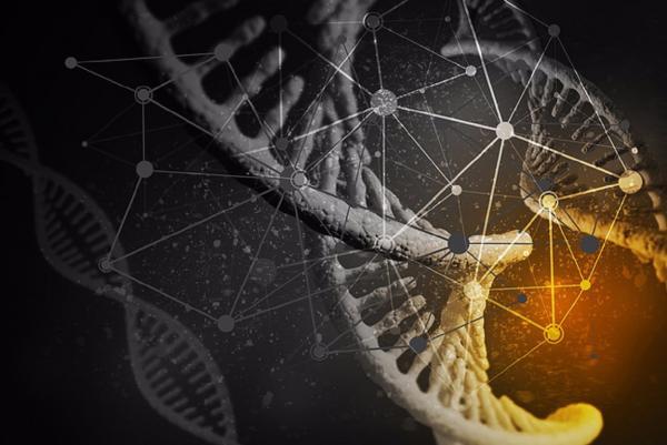 Компьютерный вирус на ДНК, микромоторы на бактериях и другие новости бионики