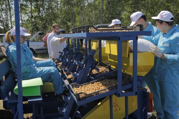 Проект крупнейшего за Уралом картофелеводческого центра успешно стартовал