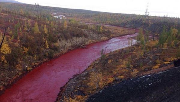 Почему покраснела река в Красноярском крае, как и когда в России стали задумываться об экологии и откуда в мозгу современных людей шарики магнетита