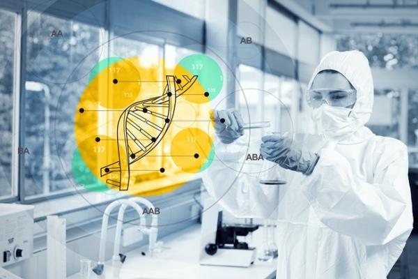 Зачем клетке так много ДНК?