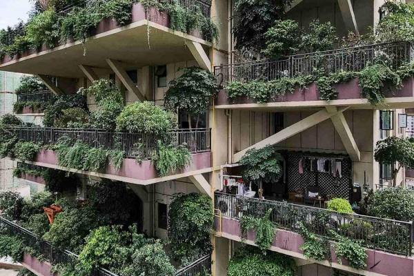 Как природа испытывает «зеленый» город на прочность