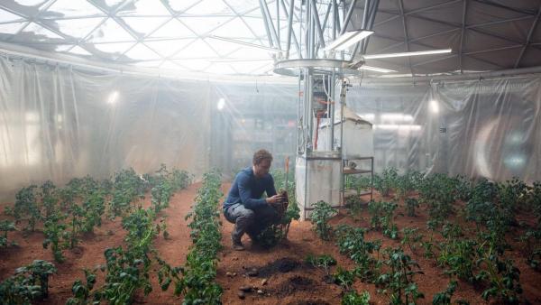 Ученые попытались смоделировать в лаборатории процесс выращивания растений в грунте Марса