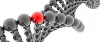 Исследования антиоксидантного белка помогут найти лекарство от неизлечимой  болезни