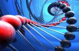 Ученые ФИЦ ИЦиГ СО РАН обнаружили ген, влияющий на развитие депрессии у европейцев