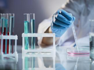Ученые НИИКЭЛ используют новейшие клеточные технологии
