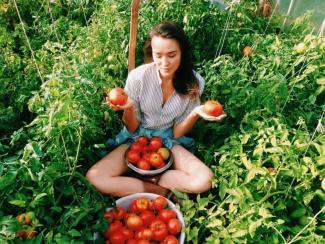 Есть ли будущее у «умных» сити-ферм?