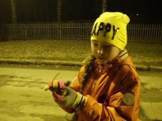 Жители Новосибирского Академгородка спасают остромордых лягушек