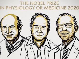 «Нобель» по медицине присудили за открытие вируса гепатита С