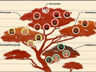 Обзор последних результатов из области изучения антропогенеза