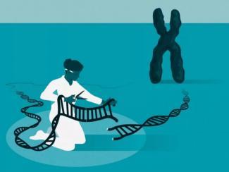 Нобелевская премия по химии в 2020 году присуждена разработчицам технологии редактирования генома