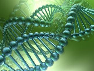 Какими видят центры геномных исследований ученые из российских университетов