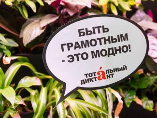 В Новосибирске начали проверять «Тотальный диктант»