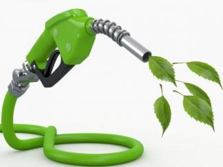 Новосибирские химики предлагают использовать био-сырье для повышения качества бензина