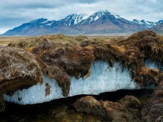 Таяние вечной мерзлоты может увеличить площадь пахотных земель