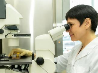 Сибирские ученые смоделировали хромосомную нестабильность