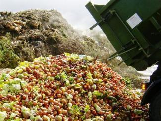 О технологии биологической переработки твердых коммунальных отходов