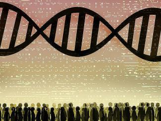 Эволюция органического мира через кризисы: научное наследие Дмитрия Соболева