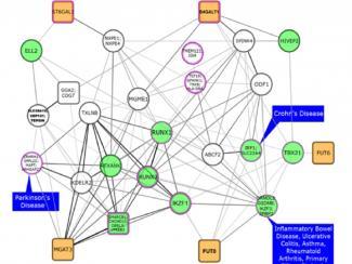 Ученые показали связь генетического контроля уровней углеводов и серьезных заболеваний человека