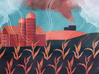 Выбор в пользу органического земледелия начинают поддерживать материально