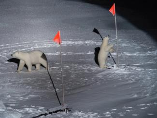 Почему потепление в Арктике не спасает нас от суровых зим?