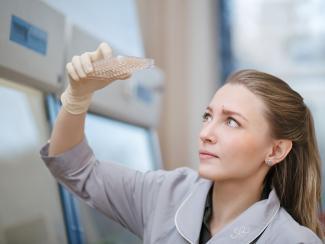 В России всего несколько мест, где работают с технологией выращивания церебральных органоидов, одно из них - ФИЦ ИЦИГ СО РАН