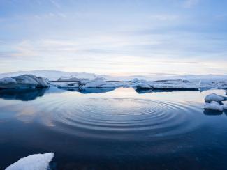 Ученые изучают влияние глобальных изменений климата
