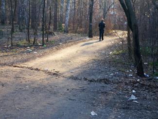 Лесная зона Академгородка: территория экологического бедствия